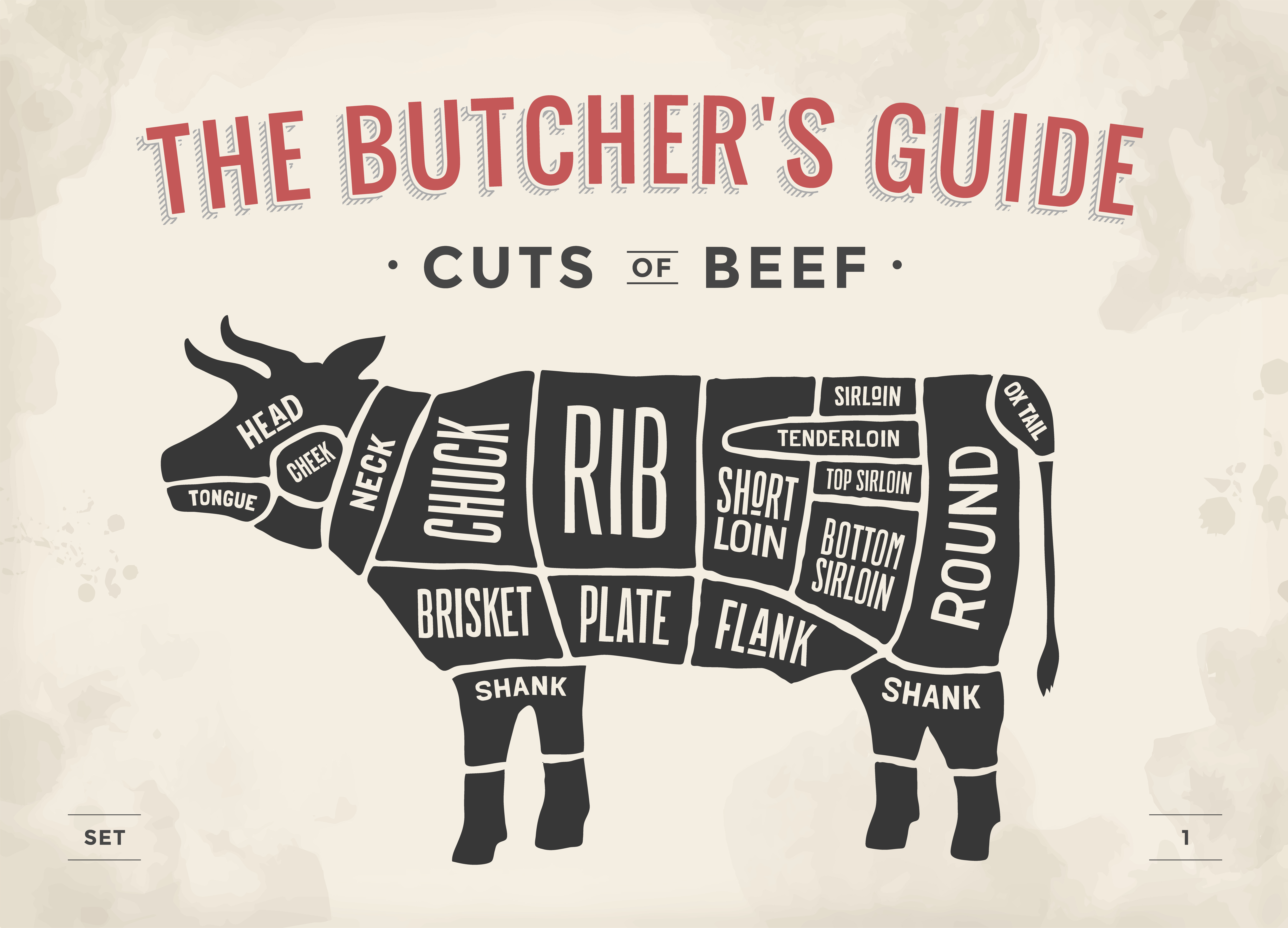 Beef cuts on a cow